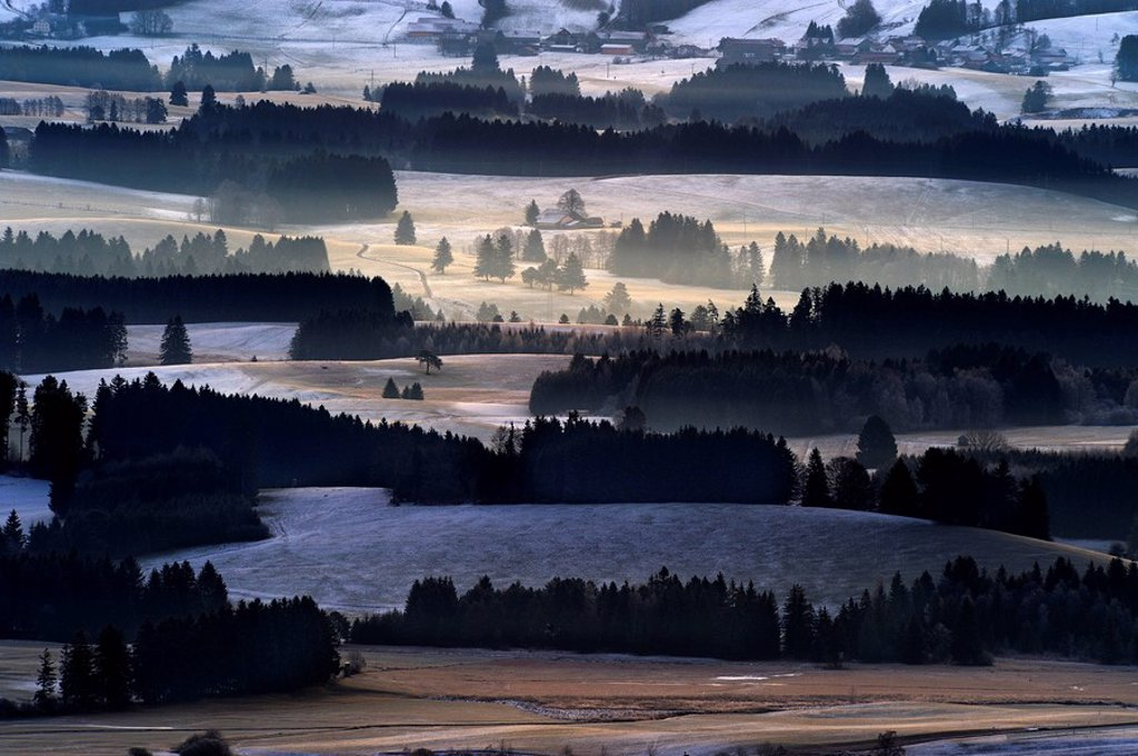 Stock Photo: 1848R-287222 Forested area in early-morning haze, Auerberg, Markt Oberdorf, Allgaeu, Bavaria, Germany, Europe