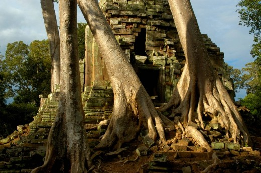 Stock Photo: 1848R-290013 Khmer temple Preah Palilay grown in big trees Angkor Thom Siem Reap Cambodia