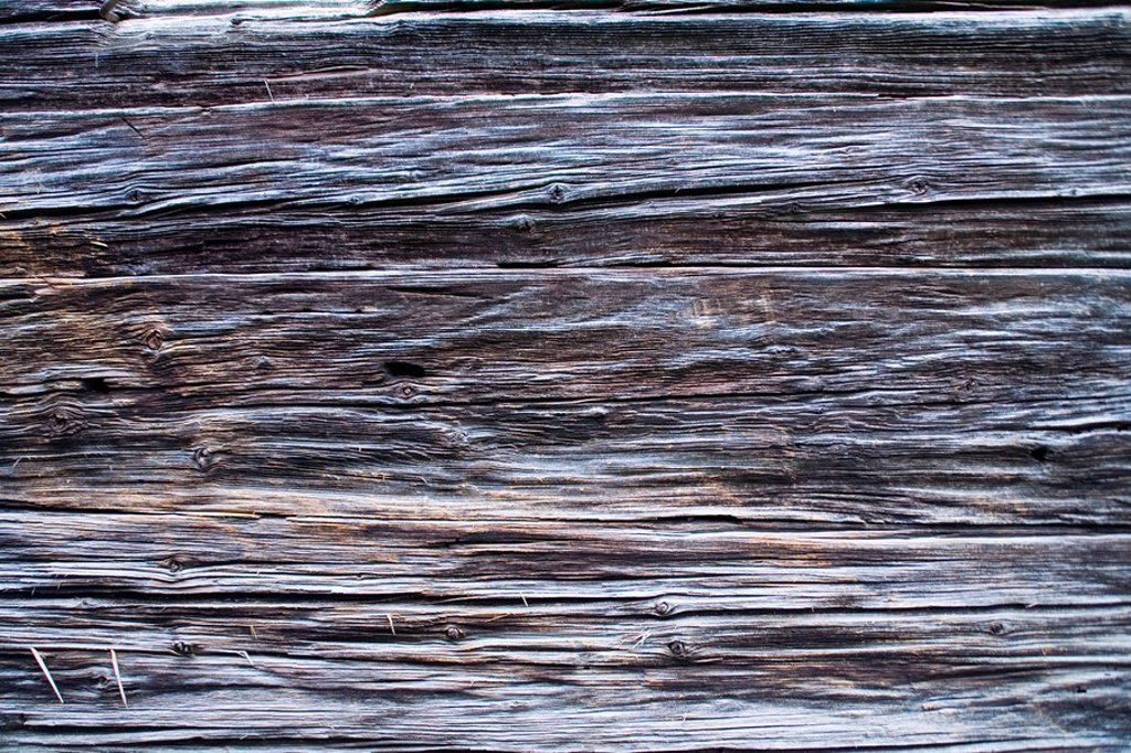 Weathered wood wound : Stock Photo