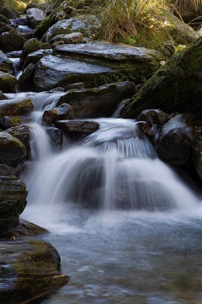 Stoney mountain stream by the Copland Track, West Coast, South Island, New Zealand : Stock Photo