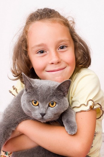 Girl, 6 years old, with British Shorthair cat, blue : Stock Photo