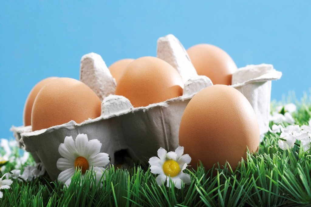 Stock Photo: 1848R-292121 Carton containing brown eggs on a flower meadow
