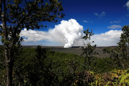 Stock Photo: 1848R-292304 Tropical vegetation changes with the volcanic scenery in the Volcanoes National Park, Big Island, Hawai´i, Hawaii, USA