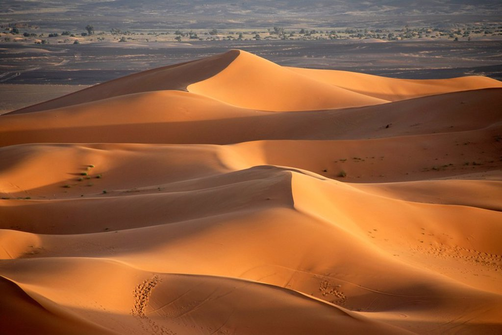 Stock Photo: 1848R-292795 Sanddunes Erg Chebbi Merzouga Morocco