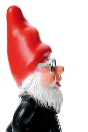 Cool garden gnome wearing sunglasses, side view : Stock Photo