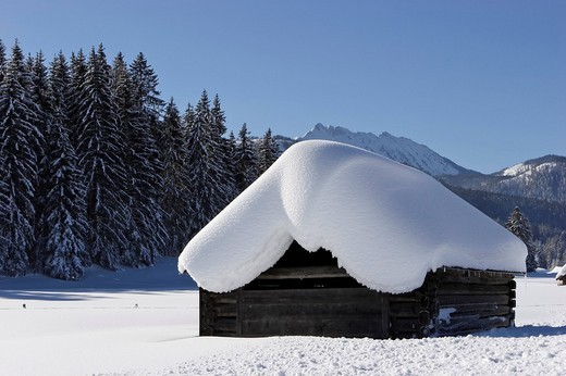 Stock Photo: 1848R-294008 Log cabins deeply covered with snow near Krungl Styria Austria