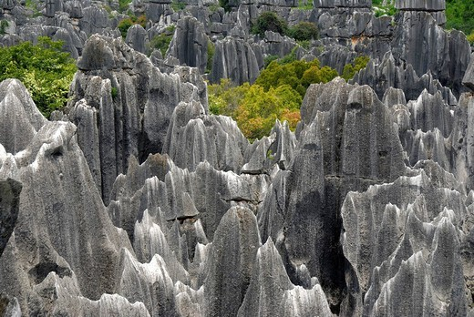 UNESCO World Heritage Site, rocks like sculptures, Karst topography, Shilin Stone Forest, Yunnan Province, People´s Republic of China, Asia : Stock Photo