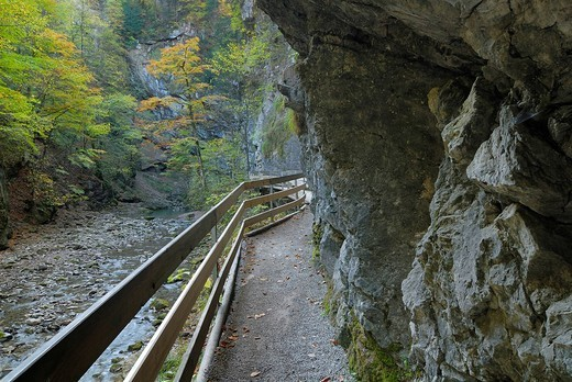 Stock Photo: 1848R-295116 Hiking trail in the Rappenloch canyon - Dornbirn, Vorarlberg, Austria, Europe