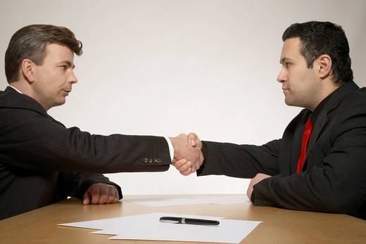 Two businessmen sealing the deal with a handshake : Stock Photo