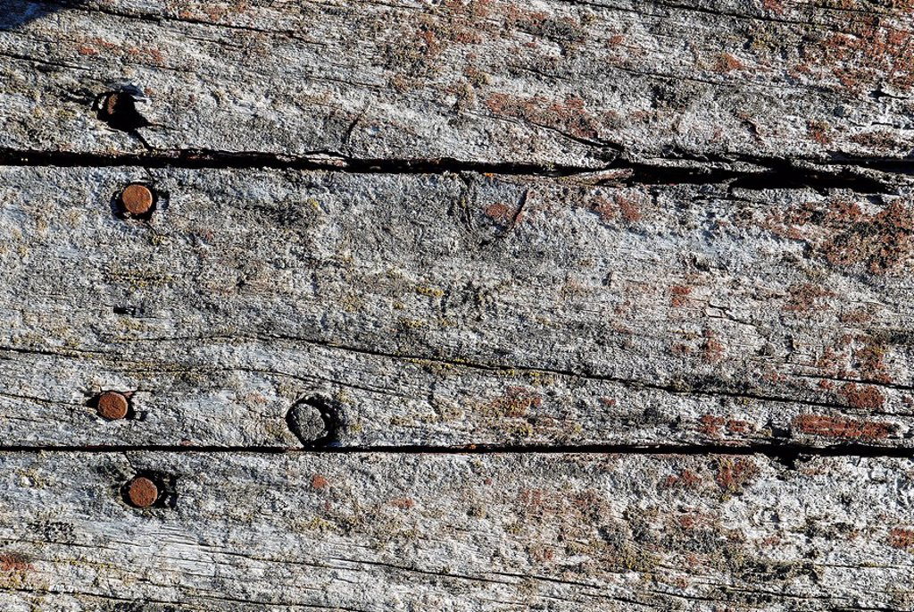 Weathered surface of wood : Stock Photo