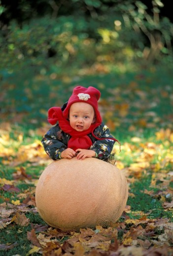 Stock Photo: 1848R-298374 One year old boy with pumpkin MR