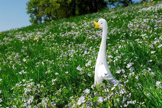 Easter decoration with a goose on a flower meadow : Stock Photo