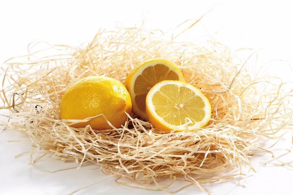 Lemons in wood shavings : Stock Photo