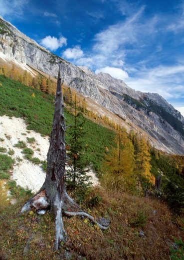 Isstal, Mt  Bettelwurf, Fallbachkar-Spitze, Halltal, Karwendel Range, Tirol, Austria : Stock Photo
