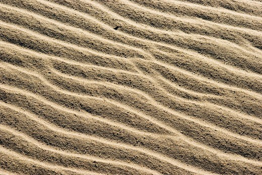 Sand structures, created by waves and wind, North Sea, Denmark, Europe : Stock Photo