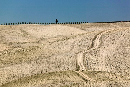 Path through autumnal fields in Tuscany, Italy : Stock Photo