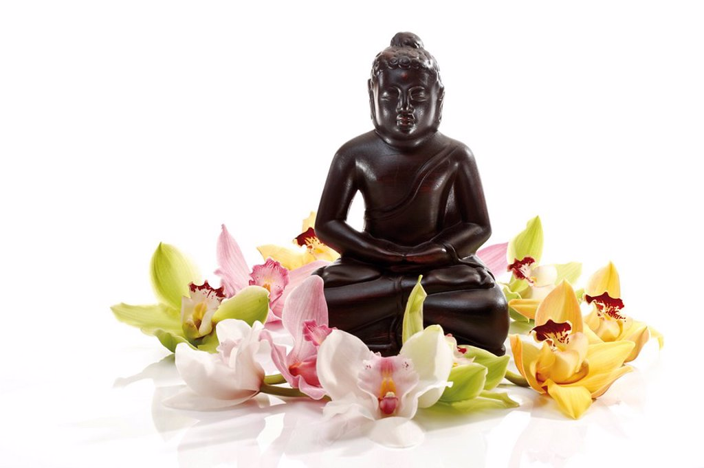 Stock Photo: 1848R-304800 Multicoloured orchid blossoms Orchidaceae in front of a black Buddha statue