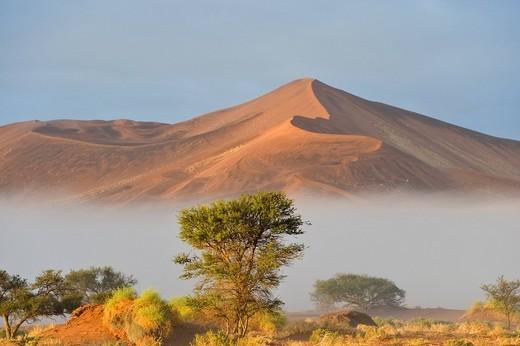 Sunrise over morning mist in the Namib Desert near Sossusvlei, Namibia, Africa : Stock Photo