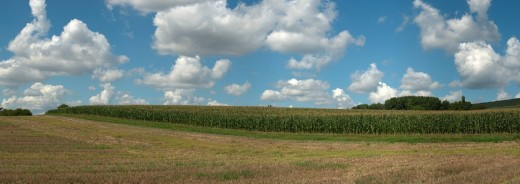 Cornfield with clouds, Friesenhausen, Hassberge, Lower Franconia, Bavaria, Germany : Stock Photo