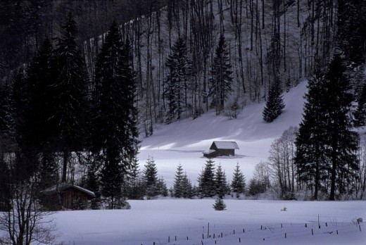 Stock Photo: 1848R-306592 Wooden huts in snow covered winter forest, near Oberstdorf, Allgäu, Bavaria, Germany