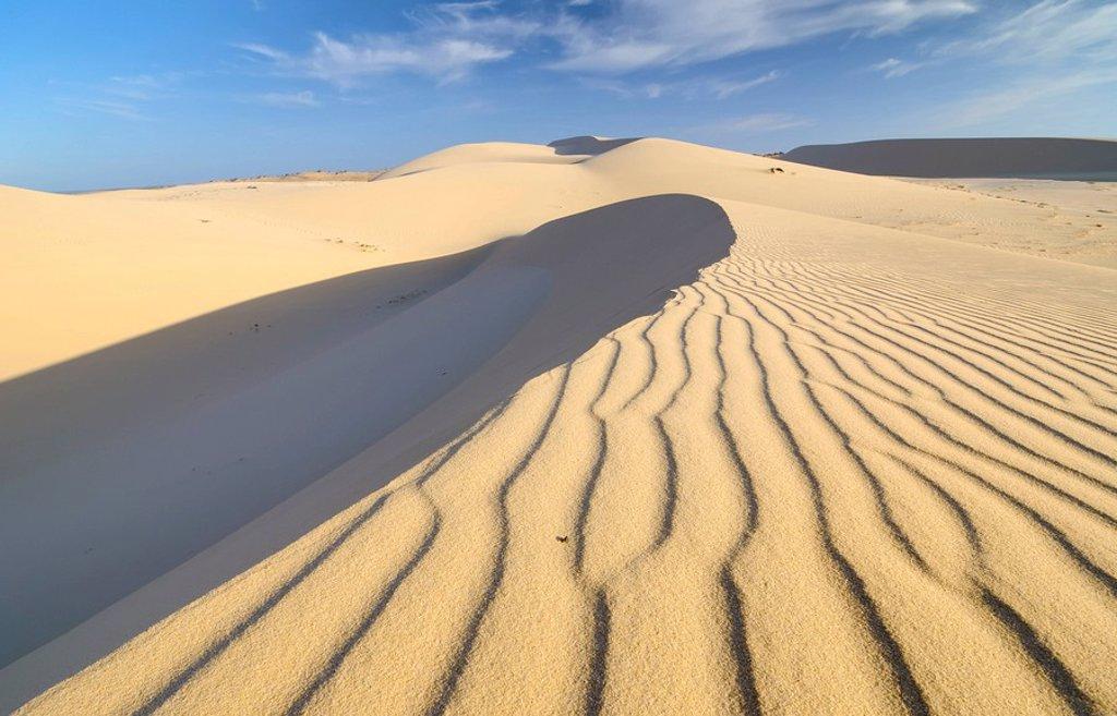Desert landscape and White Sand Dune, Bau Ba Vietnamese Sahara, Bao Trang, White Lake, Vietnam, Asia : Stock Photo