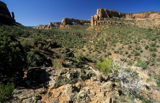 Stock Photo: 1848R-308744 Devils Canyon at McInnis Canyons National Conservation Area, Grand Junction, Colorado, USA