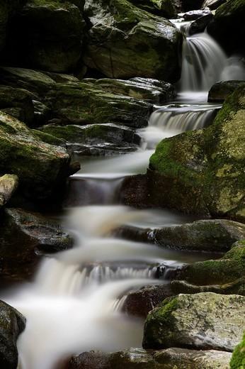 Stone flume, Bavarian Forest, Spiegelau, Bavaria, Germany, Europe : Stock Photo