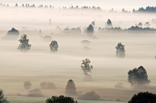 Landscape covered in fog, Bavarian pre-Alps, Upper Bavaria, Bavaria, Germany, Europe : Stock Photo