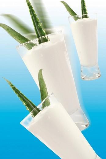 Stock Photo: 1848R-314955 Aloe Vera and yogurt, composing shot