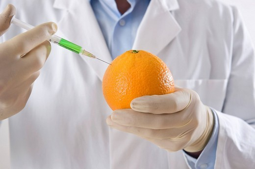 Man in a laboratory injecting liquid into an orange : Stock Photo