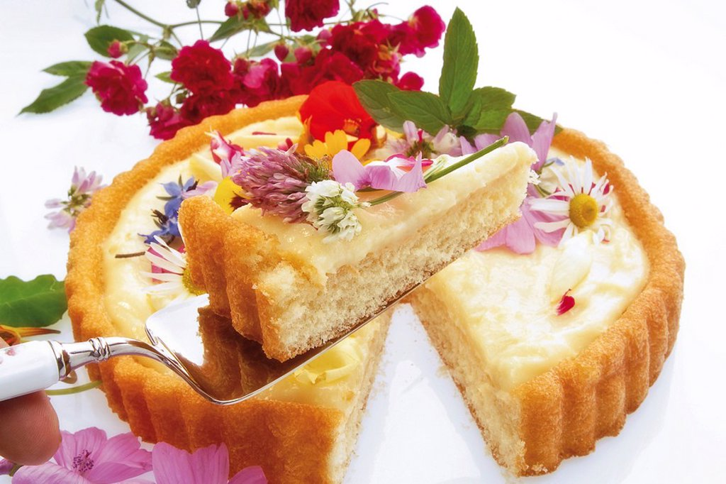 Stock Photo: 1848R-317216 Vanilla cream tart topped with edible flowers including nasturtium, rose petals, clover, hollyhock, rose blossoms and borage blossoms