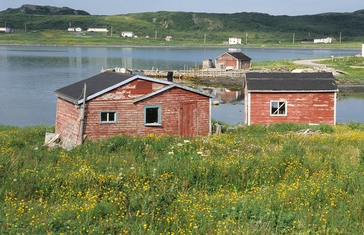 Stock Photo: 1848R-318086 Red houses in the bay of Straitsview, Newfoundland
