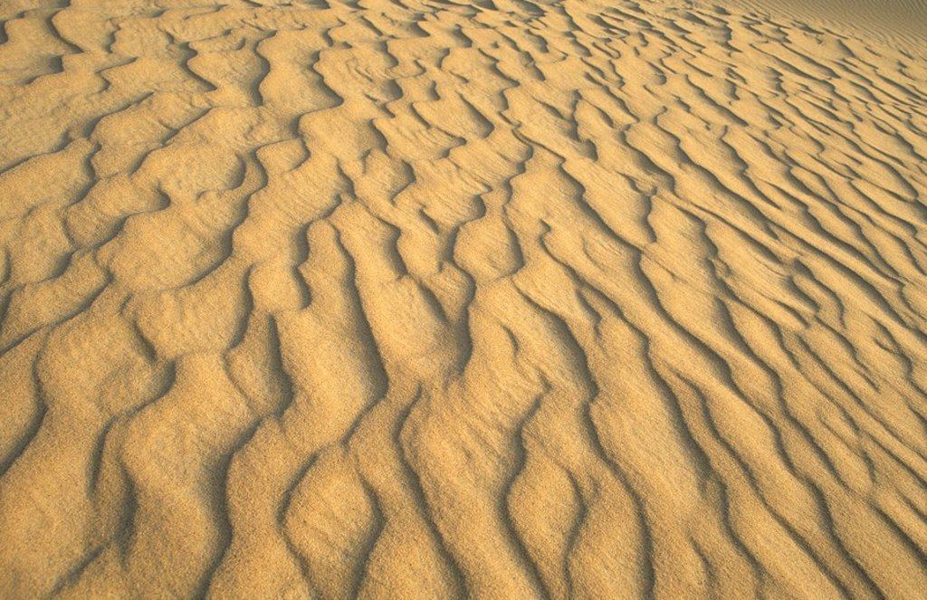 Structures in the desert sand, Erg Rabianah, Ramlat Rabyanah, Libya : Stock Photo