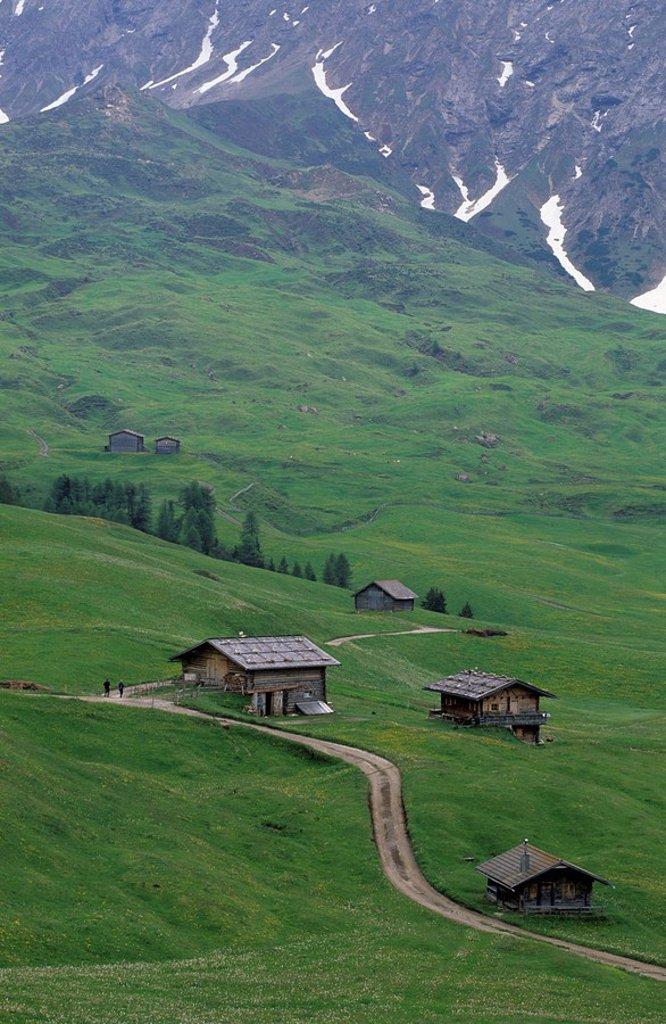 Mountain huts on the Seiser Alm Mountain Pasture, Dolomites, Italy, Europe : Stock Photo