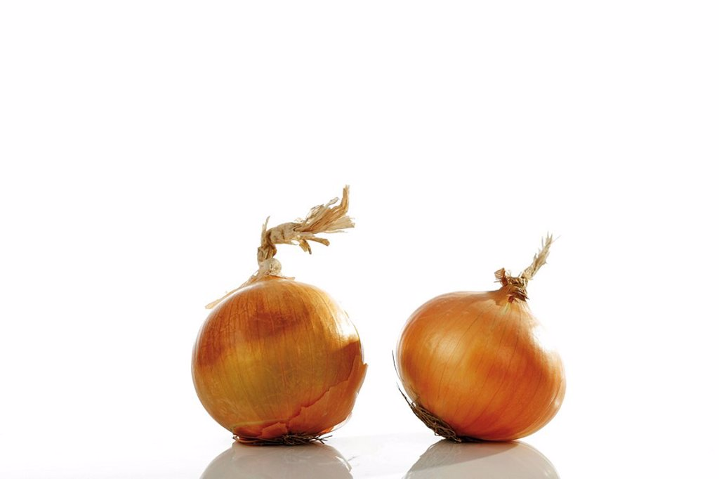Two Onions Allium cepa : Stock Photo