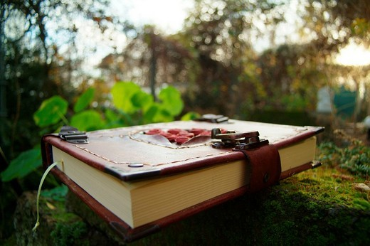 Stock Photo: 1848R-321201 Diary with reddish-brown leather cover, lock and ornamentation in a garden