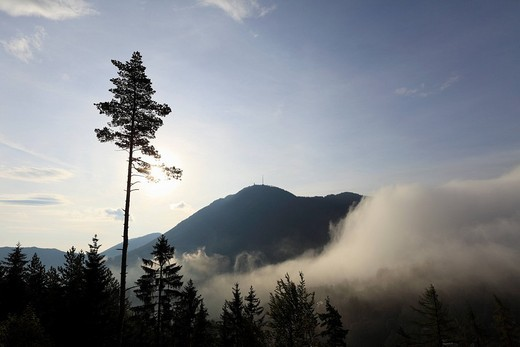 Mist at Semmering Pass, Lower Austria, Austria, Europe : Stock Photo