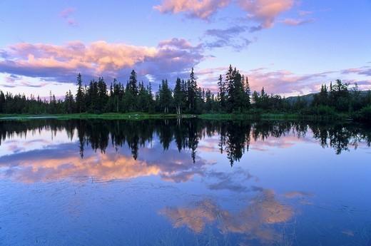 Reflection : Stock Photo
