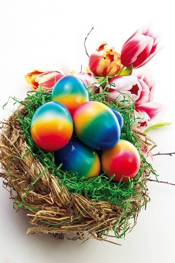 Stock Photo: 1848R-325391 Colourful painted Easter eggs in a nest