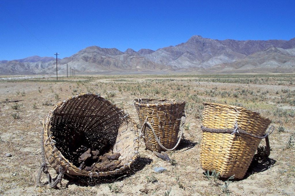 Baskets with dried dung Tibet : Stock Photo