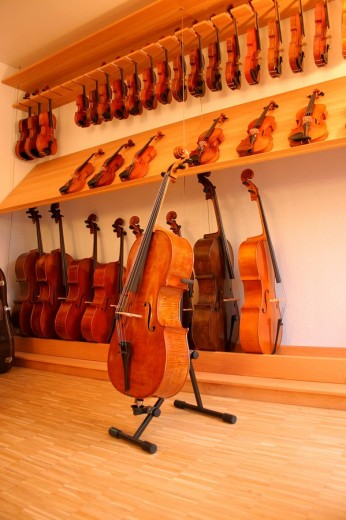 String instruments on display at a violin maker´s luthier´s shop : Stock Photo