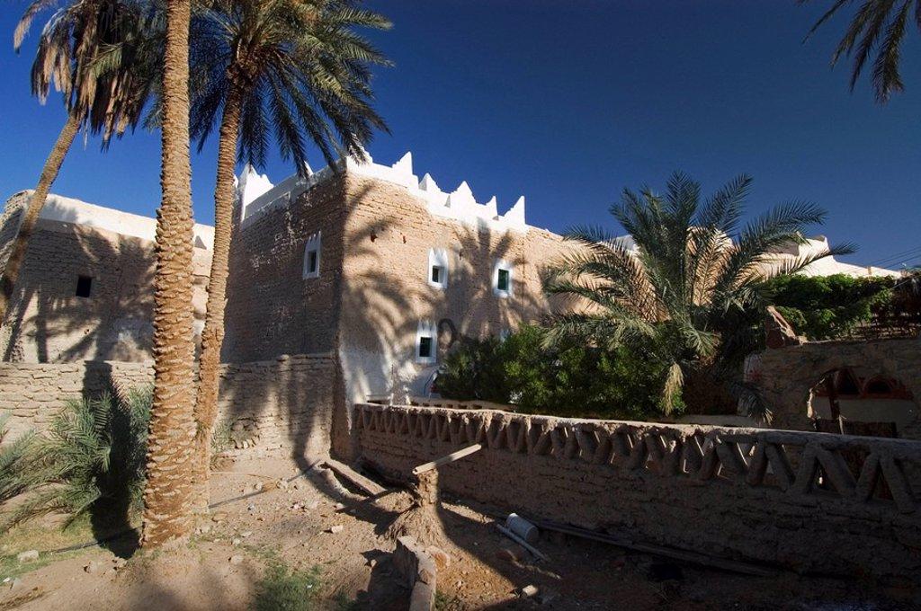Palm garden of Ghadames, Ghadamis, Unesco world heritage site, Libya : Stock Photo