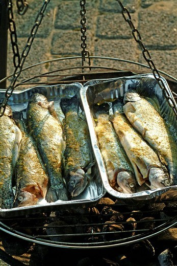 Grilled trouts : Stock Photo