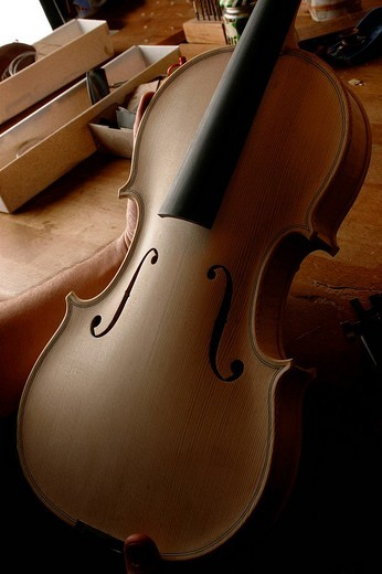 Unvarnished violin without strings : Stock Photo