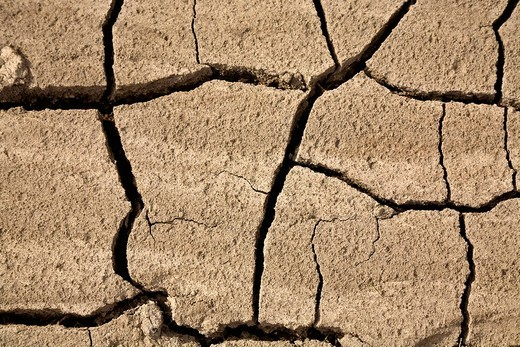 Stock Photo: 1848R-337784 Desiccated broken earth