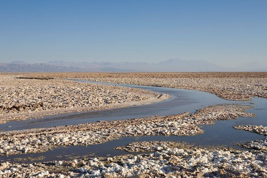 Salt formations covering the ground of the Reserva Nacional los Flamencos at the Salar de Atacama salt flats, Región de Antofagasta, Chile, South America : Stock Photo