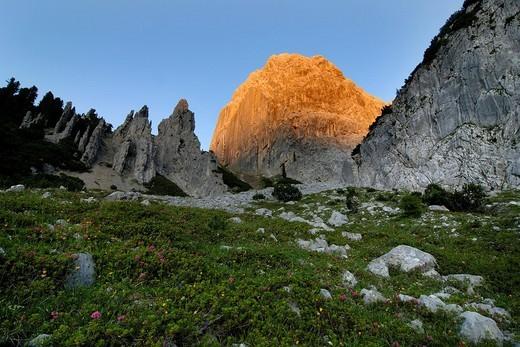 Stock Photo: 1848R-338996 Hallanger, Karwendel Range, Tirol, Austria, Europe