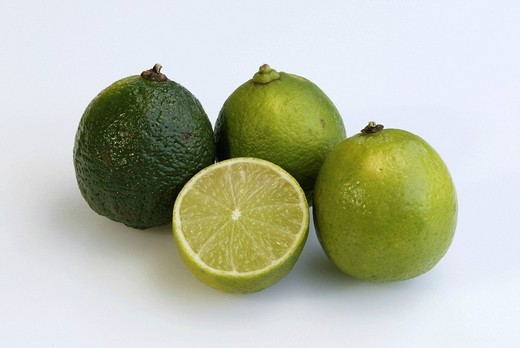 Stock Photo: 1848R-343588 Lime fruits / Citrus latifolia