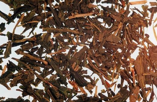 Stock Photo: 1848R-345573 Green Tea