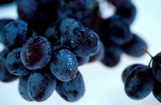 Raisins Vitis vinifera : Stock Photo